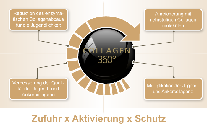 Beate Johnen Skinlike -  Collagen 360°